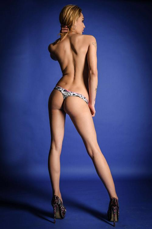 erotische massage berlin wal geschlechtsverkehr
